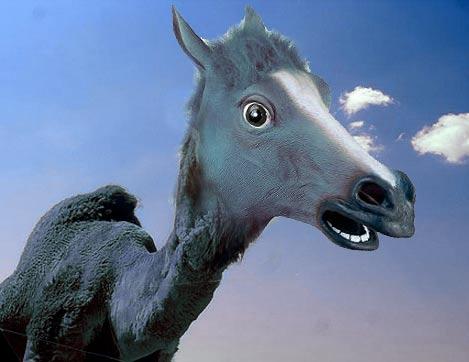 El Unicornio Azul -con el cuerno operado y una joroba de silicona- se mostró reacio a contestar y mostró su sorpresa con todo el revuelo ocasionado.