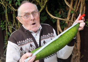 CMAP20120831H-026_C.jpg Gordon Spence HAS GROWN A VERY LARGE CUCUMBER