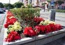 El Ayuntamiento de Santa Cruz pide a los ciudadanos que usen el servicio de cita previa para robar las flores de Pascua